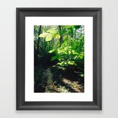 Nature Excites Me (: Framed Art Print