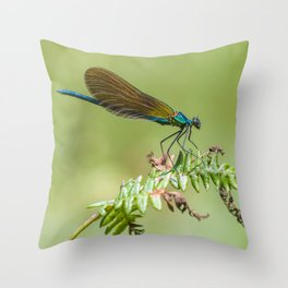 Summer lady Throw Pillow