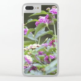 Longwood Gardens Autumn Series 144 Clear iPhone Case