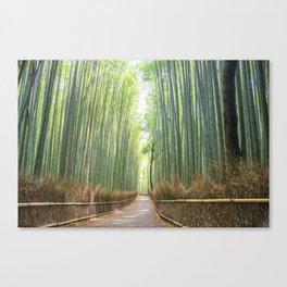 Empty Path Arashiyama Bamboo Forest Canvas Print