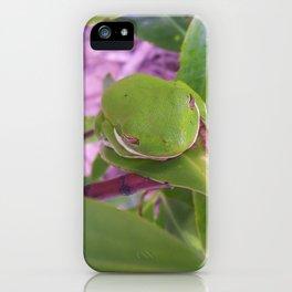 Hidden Frog iPhone Case