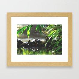 Turtle Life Framed Art Print