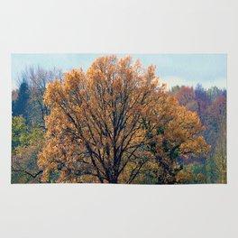 wonderful autumn beginning Rug