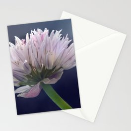Chive Stationery Cards