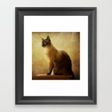 Stoney Framed Art Print