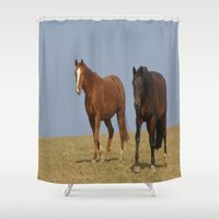 horses Shower Curtains featuring horses by Laake-Photos