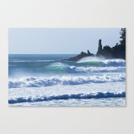 Tairua Rights Canvas Print