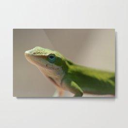 Portrait of a Green Anole Metal Print