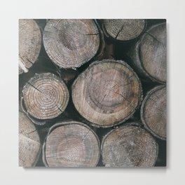 Log Ends Metal Print
