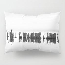 Salton Sea 6 Pillow Sham