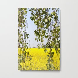 Birch rape flower Metal Print
