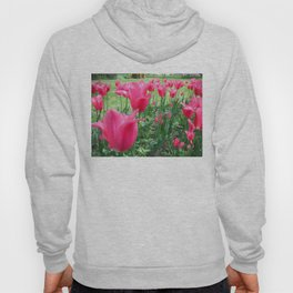 Spring Tulips. On Front Page. Hoody