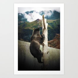 Over the wall Art Print