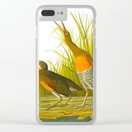 Salt Water Marsh Hen Clear iPhone Case