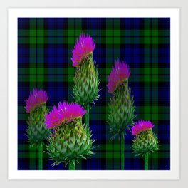 SCOTTISH PURPLE THISTLES ON CAMPBELL BLACKWATCH TARTAN Art Print