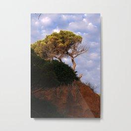 Tree on the Algarve coast Metal Print