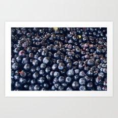 Blueberries & berries blue Art Print
