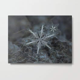 Real snowflake photo - Stars in my pocket like grains of sand Metal Print
