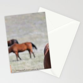 Extremely Photogenic Horse Stationery Cards