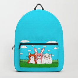 Adventure? Backpack