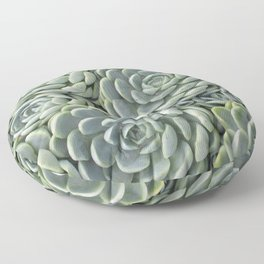 Pale Green Succulent Garden Floor Pillow