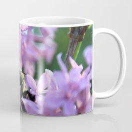 Busy Bee in Lilac Art Photography Coffee Mug