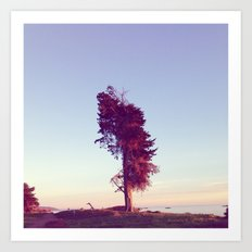 The Lone Tree (Coast) Art Print