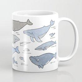 Whales Dolphins & Porpoises Coffee Mug