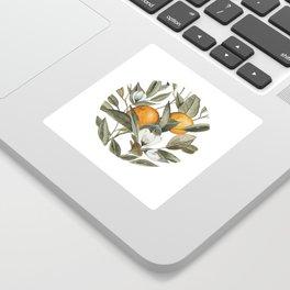 Orange Blossom Sticker