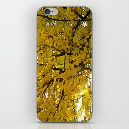 Liquid Amber Autumn Vibes Abstract iPhone Skin