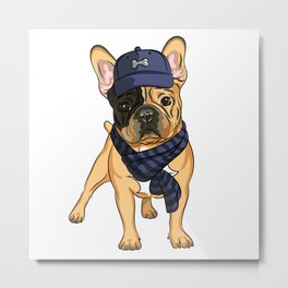 Cute puppy pug in baseball hat and scarf. Metal Print