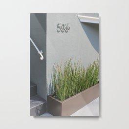 City plants in SF Metal Print