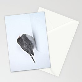 Brave Bird in a Blizzard Stationery Cards