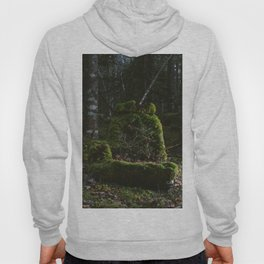 Abandoned by man, Reclaimed by nature Hoody