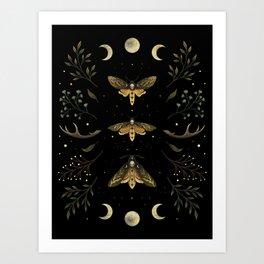 Death Head Moths Night Art Print