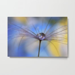 Cool Water A droplet on a Dandelion Seed Parachute Metal Print
