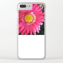 Think Spring Clear iPhone Case