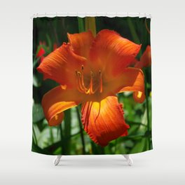Fiery Daylily Flower - Hemerocallis 'Coleman Hawkins' Shower Curtain