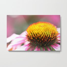 Daisyed and confused Metal Print