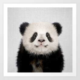 Panda Bear - Colorful Art Print