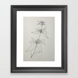 Flower02 Framed Art Print