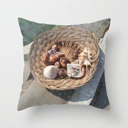 basket of shell Throw Pillow