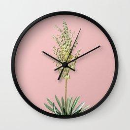 Vintage Adam's Needle Botanical Illustration on Pink Wall Clock