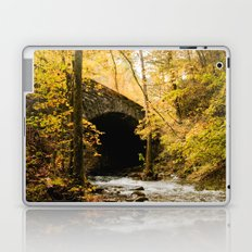 Stone Bridge Laptop & iPad Skin