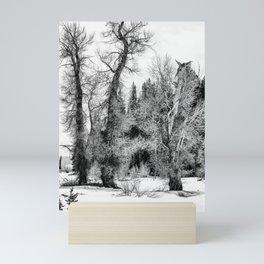 Three Trees BW Mini Art Print