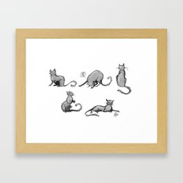 Little kitties Framed Art Print