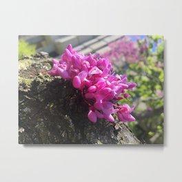 Angled Flower Metal Print