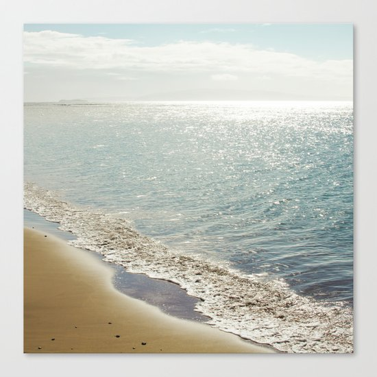 beauty and the beach Canvas Print