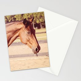 Glorious Autumn Stationery Cards