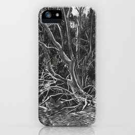The Mangroves iPhone Case